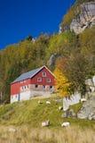 Kvaevemoen, Norvegia Immagine Stock Libera da Diritti
