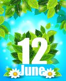 Kvalitets- bakgrund med gröna sidor Fjädra affischen Juni 12 med blommor, och bokstaven, mönstrar, planlägger för utskrift Arkivbilder