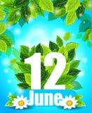 Kvalitets- bakgrund med gröna sidor Fjädra affischen Juni 12 med blommor, och bokstaven, mönstrar, planlägger för utskrift Arkivbild