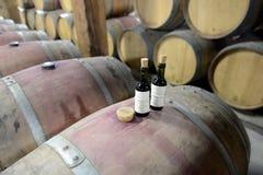Kvalitets- kontroll av vin på vinodlingen Santa Rita Arkivbild