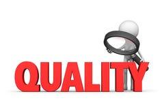Kvalitets- kontrollera royaltyfri fotografi