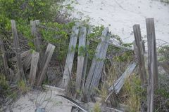 Kvarlevor av en gammal trälinje för staket för sanddyn det sandiga golvet arkivfoto