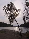 kvarnsjon λίμνη Χ Στοκ Εικόνα