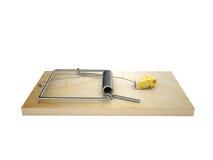 Kvarter av ost i mousetrap Royaltyfri Bild