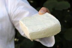 kvarter för kvinnahadninnehav av fårost arkivfoton