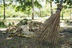 Kvast och blad på jordningen i parkera Royaltyfri Foto