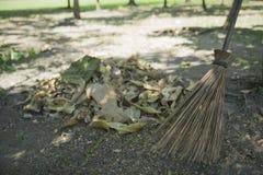 Kvast och blad på jordningen i parkera Royaltyfri Fotografi