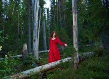 Kvinna den mystiska skogen Fotografering för Bildbyråer