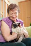 kvinna för kattcoonmaine silver Arkivfoto