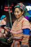 kvinna för medlem för stam för barnblommahmong på den lokala bondemarknaden som är hög upp i bergen arkivfoto