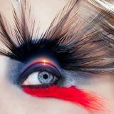 kvinna för soluppgång för makeup för makro för strandfågelblåtira Arkivbilder