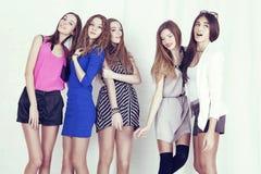 kvinna för studio för modemodell nätt plattform Royaltyfri Foto