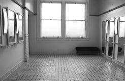 kvinna för toalett s Royaltyfri Foto