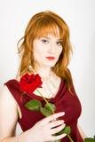 kvinna för valentiner för elegant red för dag rose Arkivfoton
