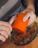kvinna för vektor för förberedelse för matillustrationkök spola ren den röda moroten för vegetarisk tabell Royaltyfri Foto