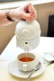 Kvinna hällande tea för hand Fotografering för Bildbyråer