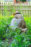 Kvinna i dräkt på den Missouri staden Royaltyfria Foton