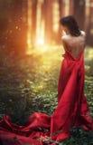 Kvinna i en lång röd klänning bara i den sagolika skogen och myst Royaltyfri Bild