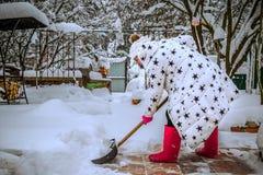 Kvinna i ett vitt vinteromslag och röda skor Gör klar vägen från snö efter tungt snöfall Flickan tar bort snö med en skyffel arkivbilder