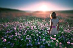 Kvinna i fält av blommor på solnedgången Arkivfoto