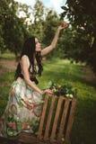 Kvinna i färgrik maxi klänning med asken med äpplen i en solig gar Royaltyfri Bild