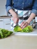 Kvinna i grönt kök royaltyfri bild
