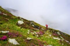 Kvinna i handling som fotvandrar i bergen med nordiska gå poler Royaltyfri Bild