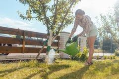 Kvinna i hennes trädgårds- bevattna fruktträd royaltyfri fotografi