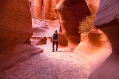 Kvinna i kanjon X arkivfoto