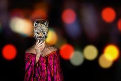Kvinna i purpurfärgad klänning och blåa ögon som rymmer en katt- maskeringscoveri royaltyfri fotografi