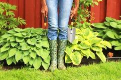 Kvinna i regnkängor i trädgård royaltyfri fotografi