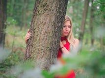 Kvinna i skog arkivfoton