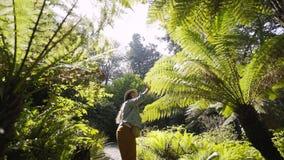 Kvinna i solig djungelskog stock video