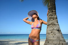 Kvinna i sommarhatt som solbadar under en palmträd på en bakgrund Arkivbild