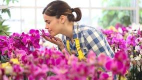 Kvinna i trädgården av blommor, handlag en orkidé och att le arkivfilmer
