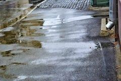 Kvinna i trädgården fallande regn raindrops Pölar med bubblor på trottoaren våt asfalt Dåligt väder Regnsäsong Arkivfoton