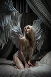 Kvinna i vit damunderkläder med vingar Arkivfoton