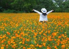 Kvinna i vitt känsligt lyckligt i det blommande gula kosmosblommafältet arkivbilder