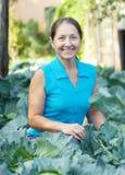 Kvinna i växt av kål Arkivfoto