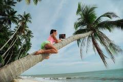 Kvinna med bärbara datorn som placeras i ett träd Arkivfoto