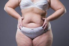 Kvinna med den feta magen, överviktig kvinnlig mage arkivfoton