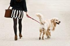 Kvinna med den mini- kjolen och hunden Arkivbilder