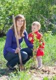 Kvinna med   dottern ställer in groddar Arkivbilder