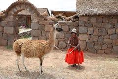 Kvinna med guanacoen i Peru arkivbilder