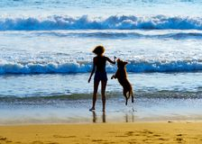 Kvinna med hunden på stranden royaltyfria bilder