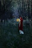 Kvinna med lyktan i skog och slott Royaltyfri Fotografi