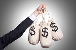 Kvinna med säckar av pengar Arkivfoton