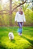 Kvinna med terriern royaltyfri fotografi