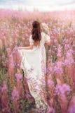 Kvinna med ugglan som körs bort på fältet av rosa blommor arkivbilder