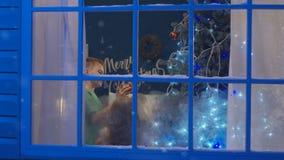 Kvinna med ungar som hemma dekorerar trädet lager videofilmer